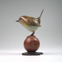 Wren on apple