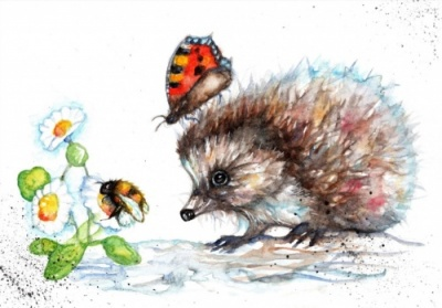 Hedgehog and daisy watercolour print
