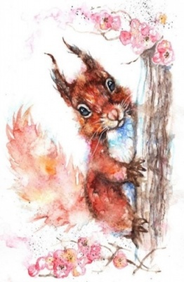 Squirrel on blossom tree watercolour print
